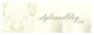 Style and Blog borító