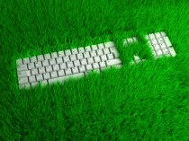 Zöld Iroda 1