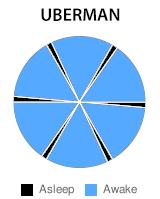 The Uberman Cycle