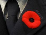 Emlékezés napja 1. világháború pipacs forrás: wikipedia